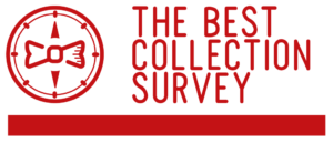 Fashion Market Research - The Best Collection Survey